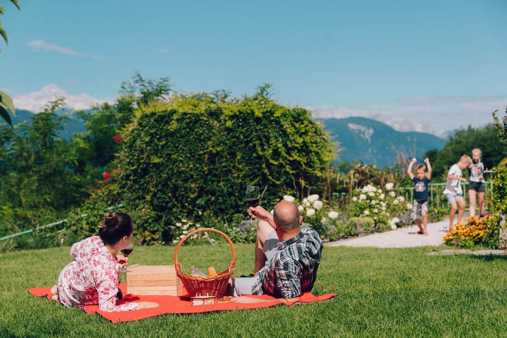 Vip piknik